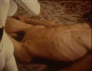 Diasparagmos 1980 5