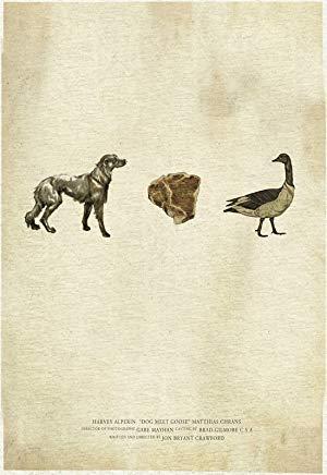 Dog Meet Goose 2012 2