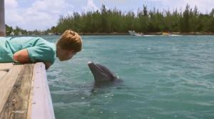 Dolphin Kick 2019 5