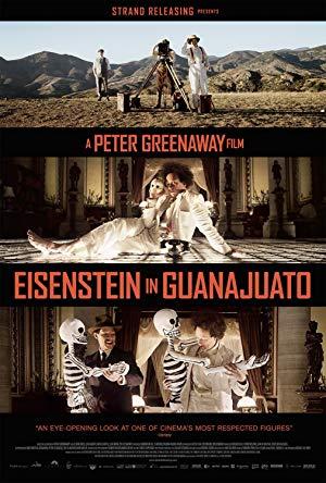 Eisenstein in Guanajuato 2015 2