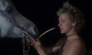 Equus 1977 7