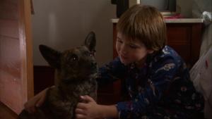 First Dog 2010 6
