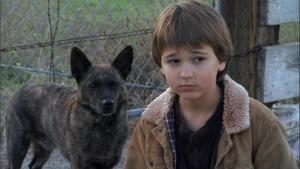 First Dog 2010 9