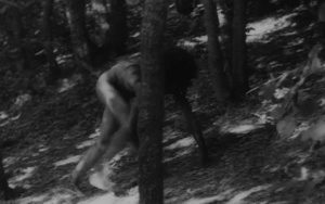 L'enfant sauvage 1970 with English Subtitles 5