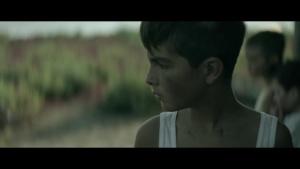 Limbo 2016 6