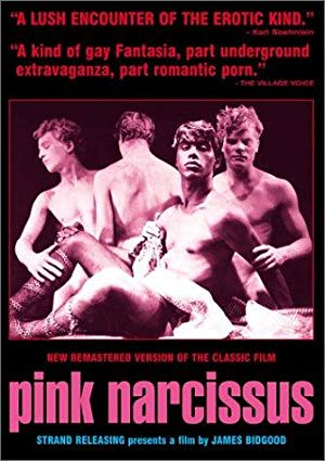 Pink Narcissus 1971 2