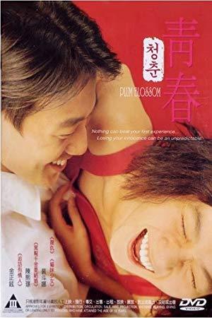 Plum Blossom 2000 with English Subtitles 2