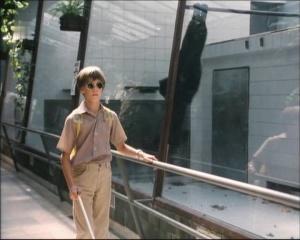 Potkal jsem ho v zoo 1994 4