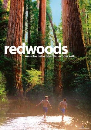 Redwoods 2009 2