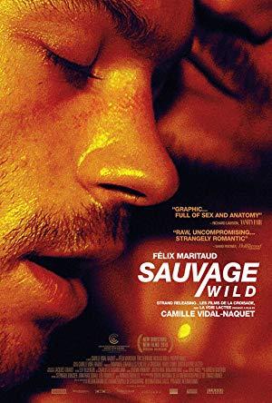 Sauvage 2018 2