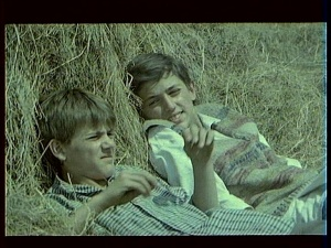 Siroko je lisce 1981 with English Subtitles 5