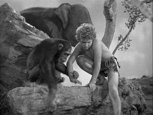 Tarzan Triumphs 1943 3