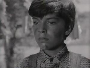 The Fool Killer 1965 4