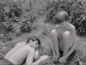 The Fool Killer 1965 9