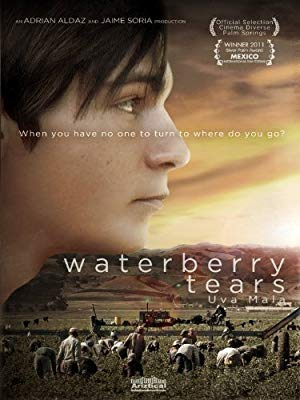 Waterberry Tears 2010 with English Subtitles 2
