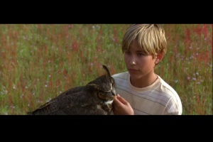 Wild America 1997 3