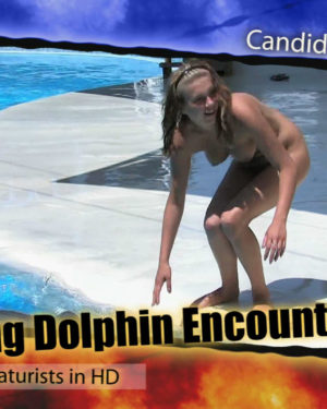 Amazing Dolphin Encounter Poster