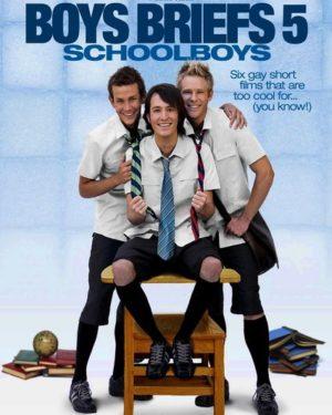 Boy Briefs 5 DVD