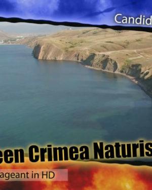 Miss Teen Crimea 2008 Poster