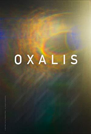 Oxalis 2018 2