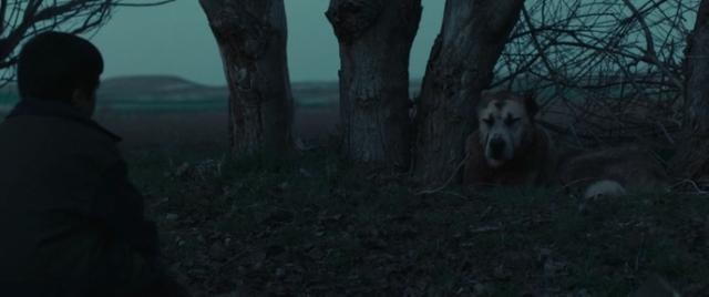 Sivas (2014) Screenshot