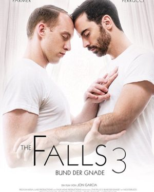 Falling for Angels (2017) DVD