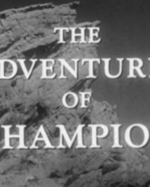 The Adventures of Champion (DVD)