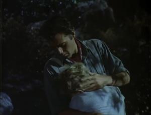 The Spanish Gardener 1956 12