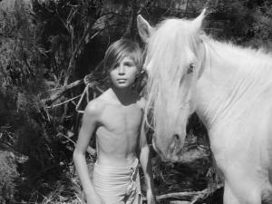 White Mane 1953 11