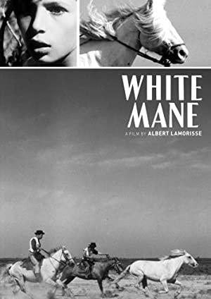 White Mane 1953 2
