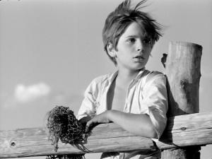 White Mane 1953 5