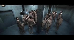 Auschwitz 2011 13
